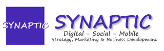 Synaptic: Strategie Internet et e-business development
